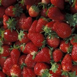 Jak vyčistit skvrnu od jahod?