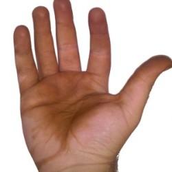 Jak vyčistit z rukou skvrny od slupek z vlašských ořechů?
