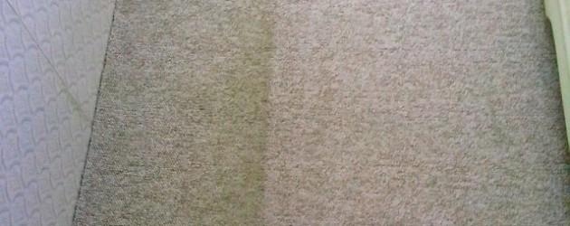 Jak vyčistit koberec domácími pomocníky i profesionální technikou?