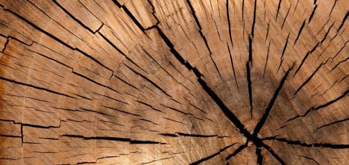 Jak vyčistit z tkanin skvrny od dřeva?